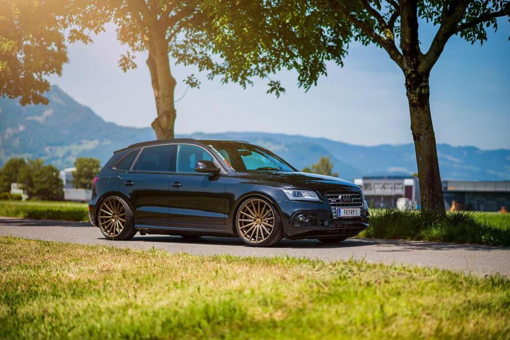 Audi_SQ5_VFS2_bec.jpg