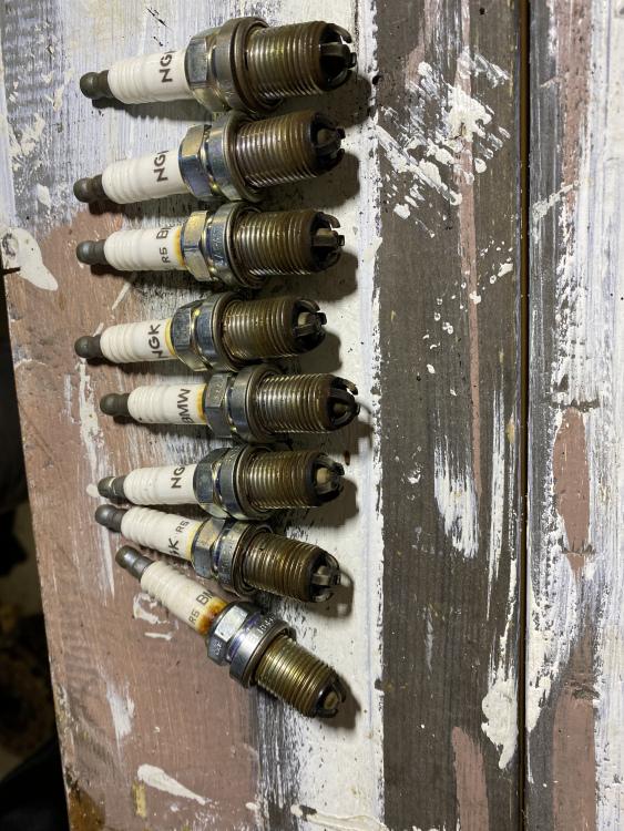 IMG_5239.thumb.JPG.4f559ef41990a4412e46dfafdf77f4ab.JPG