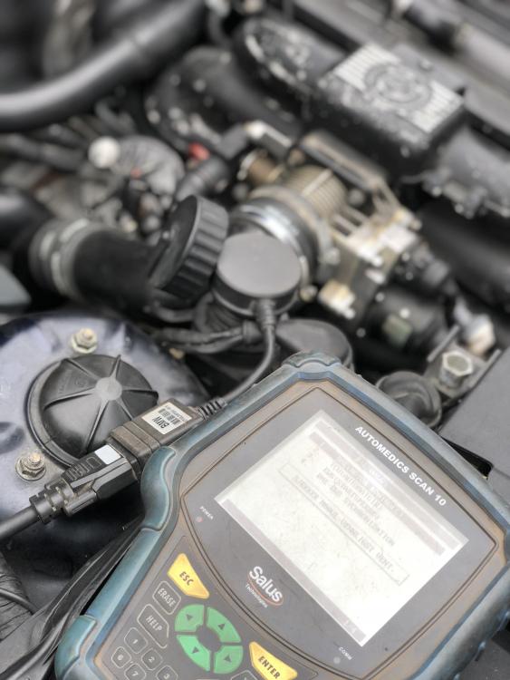 5AC950EF-80B3-4FE5-BD86-4F33920EB82F.thumb.jpeg.5ba51e4a34ee698560d5ac8dd0aa4019.jpeg