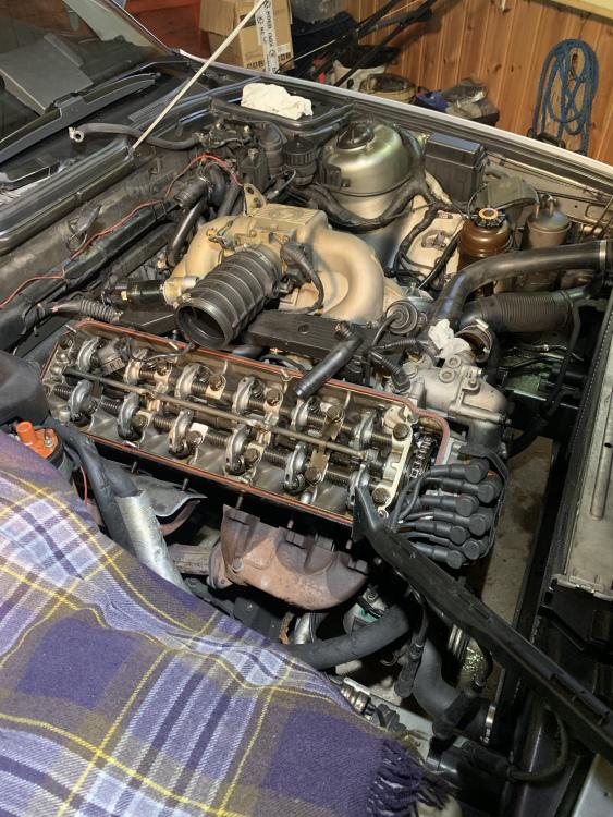 662A1EF5-7A9A-4594-AA3E-12B33F59690C.jpeg